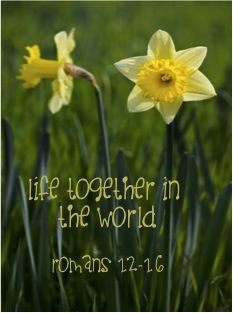 Life Together in the World: Romans 12-16
